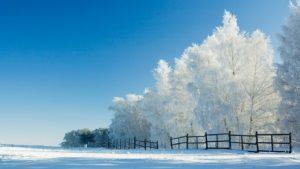 Téli szünet utáni első tanítási nap